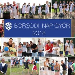 Borsodi Nap 2018.  Győr